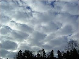Il se présente toujours en couche plus ou moins étendue, laissant parfois des trouées de ciel dégagé. Cette couche présente des teintes différentes passant du gris au blanc. Ce nuage est ...