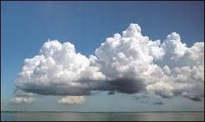 C'est sans doute le nuage le plus reconnaissable, ne serait-ce que par sa forme en  chou-fleur . Il peut être de toutes tailles. Ce nuage est un ...