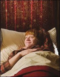 Ce dragueur absolu de Ron est au lit, comme tout dragueur qui se respecte, et il a l'air bien content ! Eh, eh, qui donc dort de ce côté, là où il regarde ?