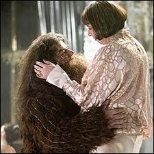 """Le """"Hagrid"""" est poilu lui aussi, îl y avait de quoi s'méfier, puisqu'on lie le poil à la virilité ! Que va-t-il donc entreprendre de très """"culotté"""" dans une saga pour enfants avec la belle et (très) grande Olympe ?"""