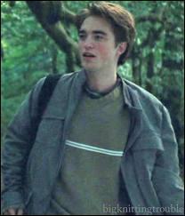 Quand la belle bête sexy de Cédric Diggory tombe de son arbre comme une poire bien mûre, pour bien faire admirer son agilité à tout le monde, qui échange un regard concupiscent prouvant l'effet réjouissant qu'il a produit ?