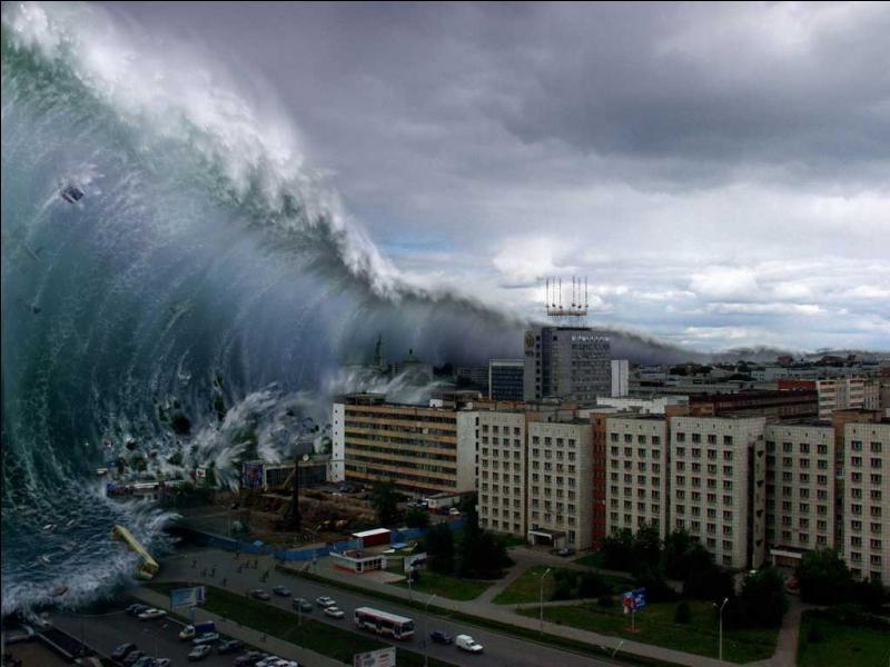 Que signifie littéralement le mot japonais  tsunami  ?