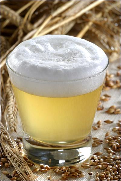 Quelle plante utilise-t-on en forte proportion pour qu'une bière soit blanche ?
