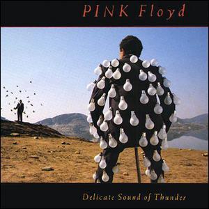 L'album live 'Delicate sound of thunder' est un résumé de la tournée mondiale de ?