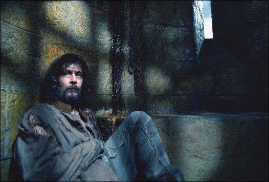 Dans 'Harry Potter et le Prisonnier d'Azkaban' (3), quel sortilège Hermione utilise-t-elle pour libérer Sirius de sa cellule en haut de la tour de Poudlard ?