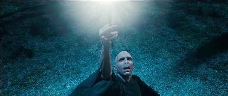 Pourquoi Voldemort n'a-t-il jamais eu d'emprise sur la Baguette de Sureau malgré qu'il l'ait subtilisée dans la tombe de son ancien propriétaire ?