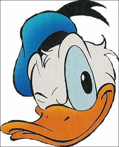 Un canard très connu habillé en marin, il a une petite amie nommée Daisy ainsi que beaucoup d'autres amis. Qui est-ce ?