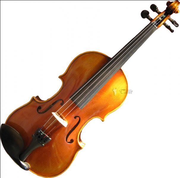 A qui appartient cet instrument de musique ?