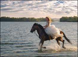 Pour ralentir et arrêter un cheval, il faut ...