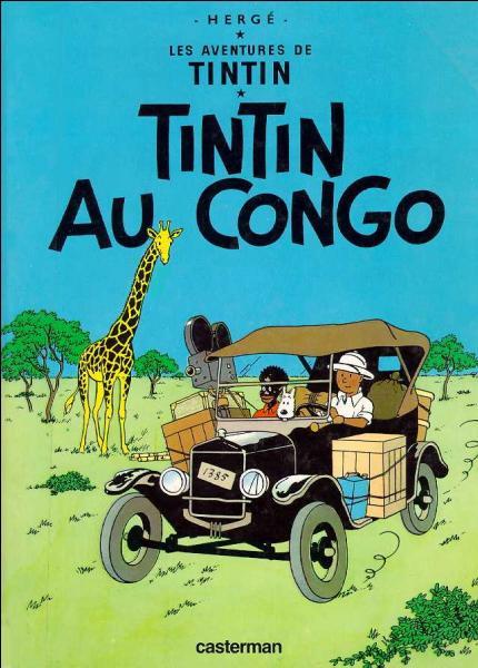 En 1931, c'est la grève dans les mines du Congo belge : Tintin y est envoyé dare-dare en reportage. (La couverture est celle de la réédition Casterman et non l'originale du  Petit Vingtième ).