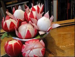 Le joyeux radis montre-t-il ses jolies couleurs sous la terre ou sur la terre ?