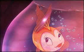 Où il n'est pas impossible qu'un poisson s'éprenne follement d'un chat...