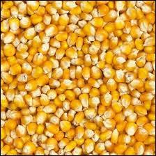 Les céréales peuvent être distribuées...
