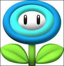 Dans Mario Bros U, cette transformation nous transforme-t-elle complètement ?