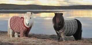 Le cheval (2)
