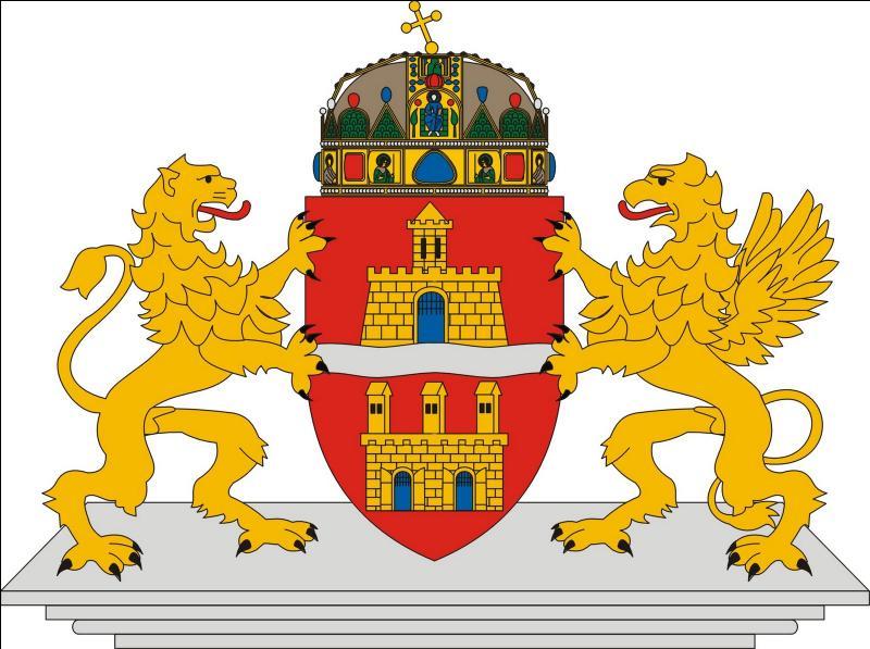 Le Danube la traverse, elle est devenue la capitale de la couronne dentaire pour les français :