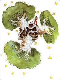 Pourquoi le petit prince n'aime-t-il pas les baobabs ?