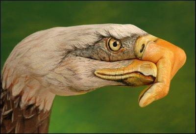 Il est l'un des quatre vautours du  Livre de la jungle , ses trois amis s'appellent Ziggy, Flaps et Buzzie, mais lui c'est ...