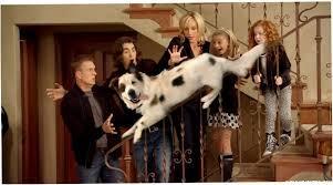 DoggyBlog