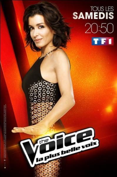 Comment s'appelle le coach féminin de  The Voice  ?