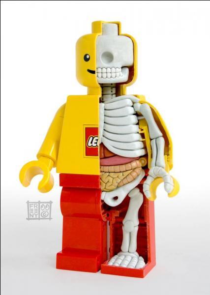 A quoi ressemblent les briques Lego ?