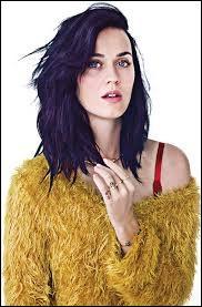 Dans quel pays est née Katy Perry ?