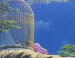 Qui est enfermé dans cette cage ?