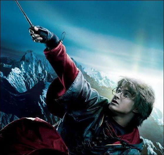 Quel personnage a veillé sur Harry durant le Tournoi des Trois Sorciers ?
