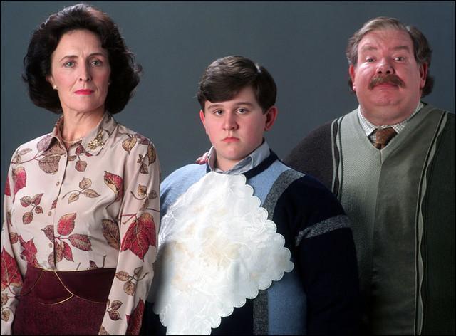 Dans combien de films apparaissent les Dursley (l'oncle, la tante et le cousin moldus d'Harry) ?