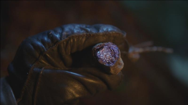Comment s'appelle la plante qui permet de vaincre ses plus grandes peurs ?
