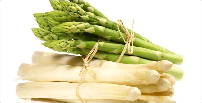 En cuisine on utilise ses pousses blanches, vertes ou violettes !