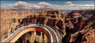 Qui attaque le groupe dans le Grand Canyon ?