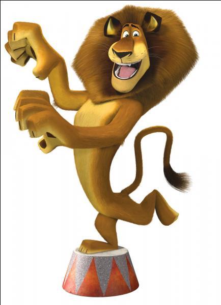Comment s'appelle le lion, leader du groupe de nos quatre compères ?