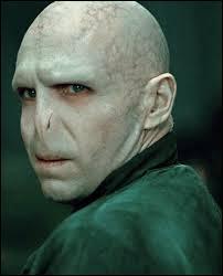 Quels sont les surnoms de Voldemort ?