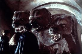 Dans  Harry Potter à l'école des sorciers , quel est le rôle de Touffu, le chien à trois têtes ?