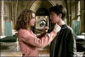 Avec quoi Harry et Hermione retournent-ils dans le temps ?