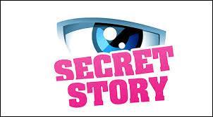 Quels anges sont issus de  Secret Story  ?