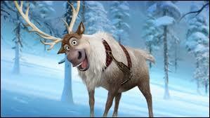 Qui est Sven ?