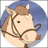 Comment s'appelle le poney de Sarah ?