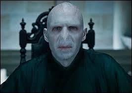 J'allais presque oublier Lord Voldemort. Lui aussi, comme Harry, a beaucoup de surnoms. Lequel n'existe pas ?