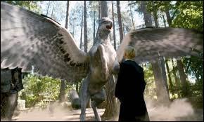 Pour les deux dernières questions, passons aux créatures ! Quel surnom donna-t-on à Buck pour éviter à Walden Macnair et au ministère de la Magie de le retrouver ?