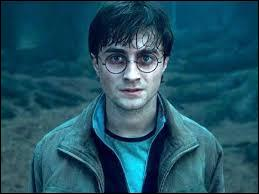 Commençons avec Potter, Harry Potter. Il en a, des surnoms, mais le plus célèbre est bien entendu :