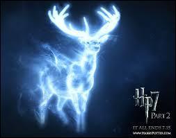 Ensuite, un moins célèbre :  Patronus Potter . Qui lui a attribué ce surnom ?