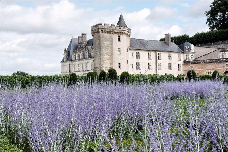 Pourquoi le château de Villandry - situé en Indre-et-Loire - est-il si renommé ?