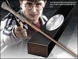 Que doit faire un sorcier pour assister à l'émission Potterveille ?
