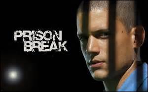 Qui chante la chanson du générique de ''Prison Break'' dans la version américaine ?