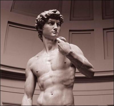 Voila encore une statue nommée le  David . Dans quelle ville d'Italie peut-on le voir ?
