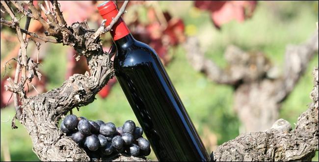 Pour accompagner le rôti, il nous faut du vin rouge. Quelle est la nature du mot  rouge