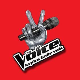 The Voice 2014 : les candidats et leurs chansons !