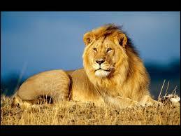 Le lion est associé à la marque ...